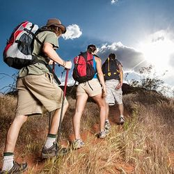 New England Full Day Guided Hiking Trip for 1