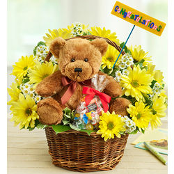Lotsa Love New Baby Flower Bouquet and Bear
