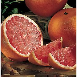 Organic Grapefruit Gift Box