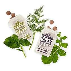Herbs & Greens Seed Bombs