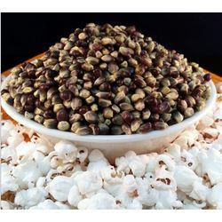 Tender Blue Popcorn Kernels