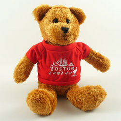Teddy Bear with Red Boston T-Shirt