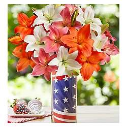 Red, White and Beautiful Summer Lilies