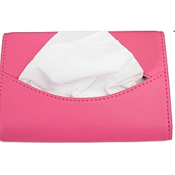Mini Leather Tissue Case