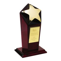 Gold Star 1st Place Award