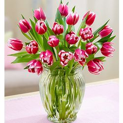 Perfectly Pink Tulip Bouquet