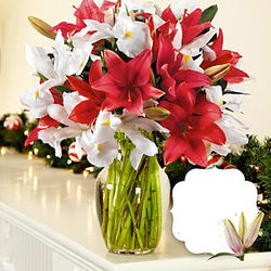 Deluxe Winter Spectacular Bouquet