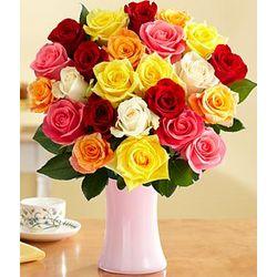 Two Dozen Rainbow Roses in Pink Vase
