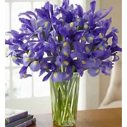 Spring Country Iris Bouquet