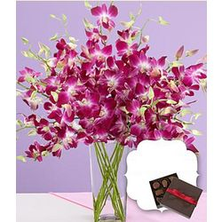 Purple Dendrobium Orchids with Vase and Chocolates