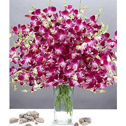 Deluxe Purple Dendrobium Orchid Bouquet