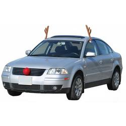 Reindeer Antler Car Costume