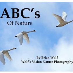 ABC's of Nature Book