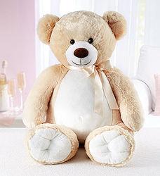 Big Bear Hugs for My Love Teddy Bear