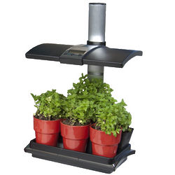 LED Light Herb Garden
