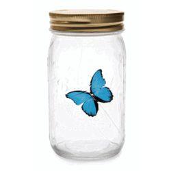 Blue Morpho Butterfly in a Jar