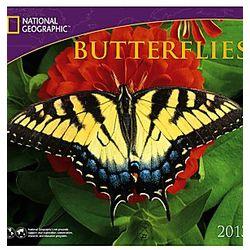 2013 National Geographic Butterflies Wall Calendar
