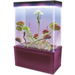 Flytrap and Sundew Growing Kit