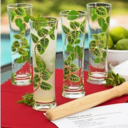 Tall Glasses Mojito Gift Set