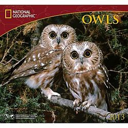 2013 National Geographic Owls Wall Calendar