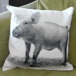 Baby Pig Canvas Throw Pillow