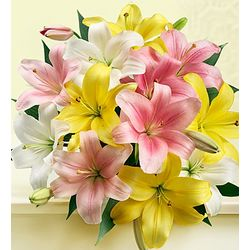 Pink Yellow and White Lilies Bouquet