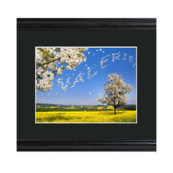Personalized Tree Blossoms Framed Print