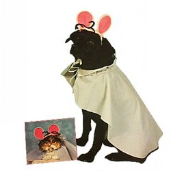 Mouse Costume for Dogs and Cats