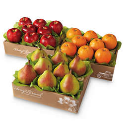 Giant Triple Treat Fruit Gift Box
