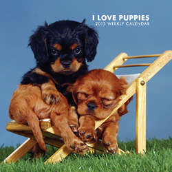 I Love Puppies 2013 Hardcover Weekly Engagement Calendar