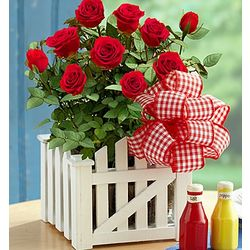All American Picnic Bouquet with Salt & Pepper Shakers