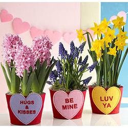 Conversation Cuties Bouquets