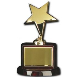 Gold Star First-Place Trophy