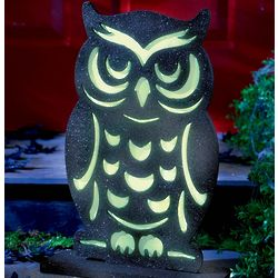Glow-in-the-Dark Owl