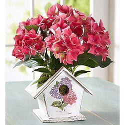 Bird House of Hydrangea Blooms