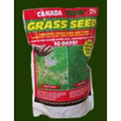 Canada Green All Season Grass Seed