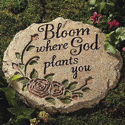Bloom Where God Plants You Stepping Stone