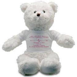 Baby Girl Birth Record Personalized Teddy Bear