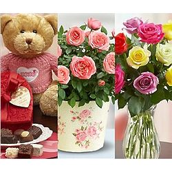 Three Days of Love Floral Bouquets and Bear