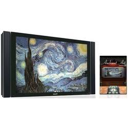 Ambient Art Impressionism DVD