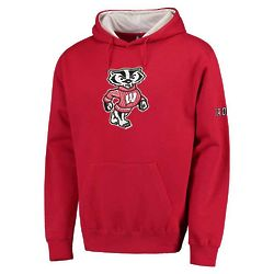 Youth's University of Wisconsin Hooded Sweatshirt in Red