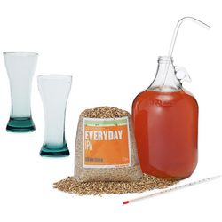 Beer Making Kit and Recycled Beer Glasses