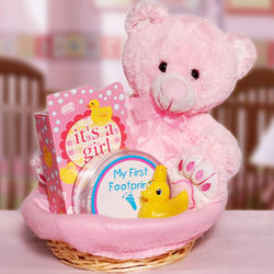 For the Baby Girl Gift Basket