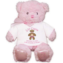 New Baby's Personalized Pink Bear