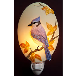 Blue Jay Night Light