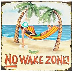 No Wake Zone Beach Sign