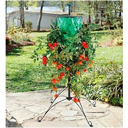Tomato Tree with Bag