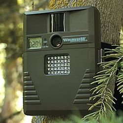 8.0 Megapixel Infrared Digital Motion-Detection Camera