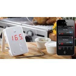 iGrill Wireless Thermometer
