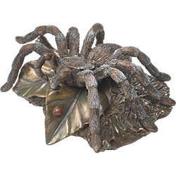 Tarantula Bronze Sculpture